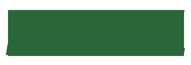 Liedo-Logo-celeriac